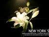 new-york-suite-03