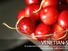 venetian-suite-08